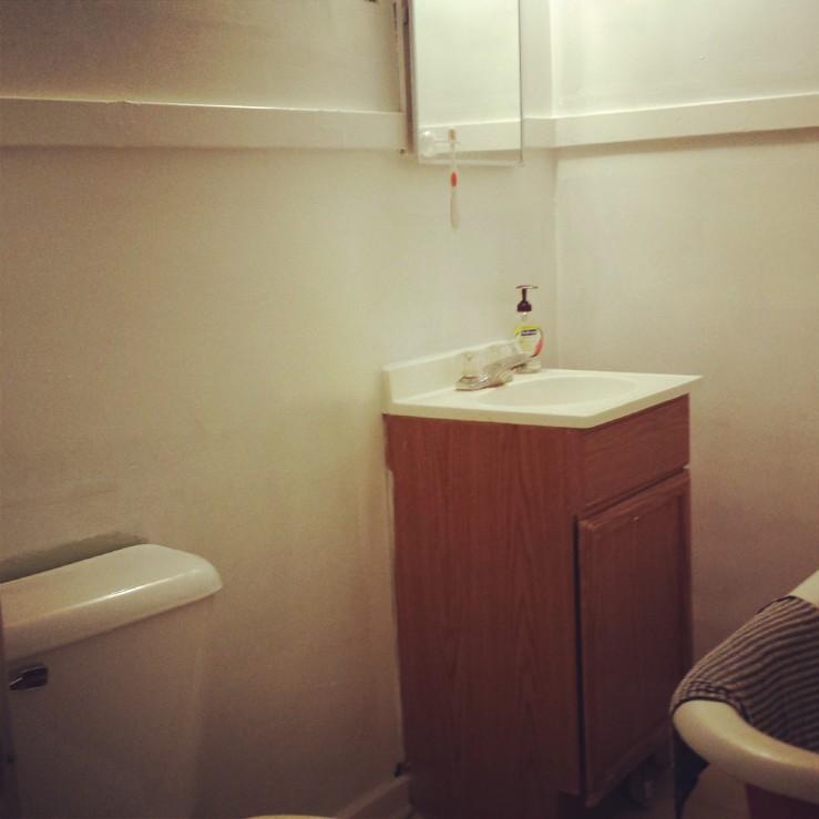 Bathroom Remodel - Halfway - This Little Space