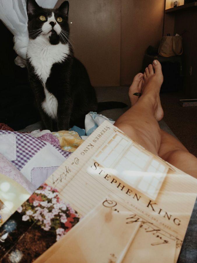 literary_cat