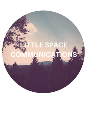 LITTLE SPACE COMMUNICATIONS
